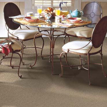 Horizon Carpet | Clarksville, TN
